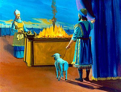 Вегетарианство да Библия. Разрешает ли Бог человеку поглощать мясо?